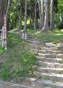 ichiyajyo_11