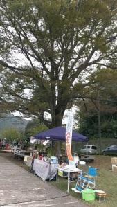 higashiizu-marshe-2
