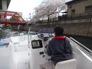 y-hanami-03